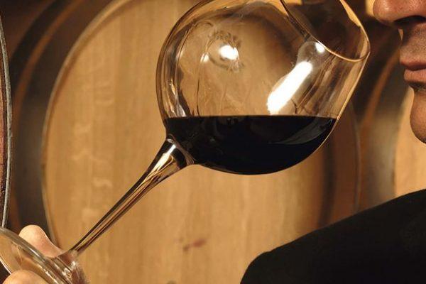 Где тонкая грань между искусным сомелье и увлечённым коллекционером вина?
